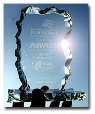Edmonton Film Festival Award
